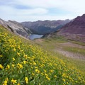 Wildflowers and Snowmass Lake in Maroon Bells-Snowmass Wilderness.- Colorado's Top 10 Outdoor Destinations