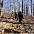 Hike among some of New England's oldest trees as you ascend Mount Wachusett in rural Massachusetts.- Ultimate Leaf-Peeping Road Trip through New England