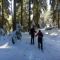 Road 240 en route to the White River Hut is remote and beautiful.- Great Cross-Country Ski Trails on Mount Hood