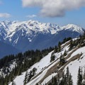 Approaching the Hurricane Ridge Visitor Center via Hurricane Ridge Road.- 15 National Parks To Visit This Winter