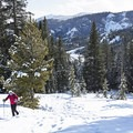 Snowshoeing from Galena Lodge.- Backcountry Skiing + Education near Sun Valley, Idaho