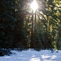 Cross-country skiing near the Gold Lake Shelter.- Best Winter Adventure Destinations