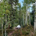 Walk-in tent site at Gore Creek Campground.- Guide to Camping in Colorado