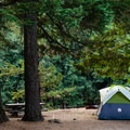 Sites at Gorge Lake Campground are ideal for tents and include a picnic table and fire pits.- North Cascades National Park