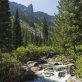 Idyllic forest vistas in Granite Canyon.- Best Hiking in Grand Teton National Park