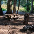 One of five sites in Grasshopper Meadows Campground.- Great Camping Near the Enchantments