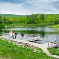 Feeding fish at the pond at Castle in the Clouds.- 20 Must-Do Summer Adventures in New Hampshire