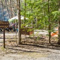 Walk-in sites along the river at Hancock Campground.- 5 Incredible Campgrounds to Explore in New Hampshire