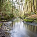 Purgatory Brook.- 10 Great Hikes Near Concord, New Hampshire