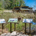 Interpretive trail at Squam Lakes Natural Science Center.- 20 Must-Do Summer Adventures in New Hampshire