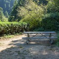 Hiker/biker site at Humbug Mountain State Park Campground.- Underused Gems of the Oregon Coast
