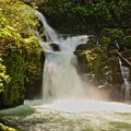 Sweet Creek Falls.- Best Hikes on the Central Oregon Coast
