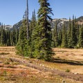 Helm Creek Campground. - 70 Breathtaking Backcountry Campsites