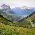 Going-to-the-Sun Road below the Highline Trail.- A Weekend in Glacier National Park