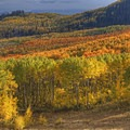 Fall foliage on Highway 190 in Utah.- Great American Towns for Fall Foliage