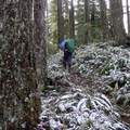 Winter brings a dusting of snow to the Eula Ridge Trail.- 10 Classic Hikes Near Eugene, Oregon