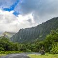Ho'omaluhia Botanical Gardens are a hidden gem located on the windward side of O'ahu.- 5 Best Family-Friendly Destinations on O'ahu