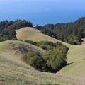 Grassland meets forest meets ocean. Mount Tamalpais State Park in Marin County north of San Francisco can be explored by mountain bike. - Trains, Boats + Bicycles: Alternative Ways to Access the Outdoors