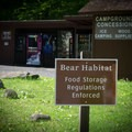 Don't forget...you're in bear country. Store food properly. - Guide To Camping In Great Smoky Mountain National Park