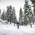 The steady climb to Angora Lookout.- Best Snowshoe Trails in Tahoe's Backcountry