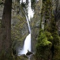 Wahclella Falls.- Columbia River Gorge National Scenic Area
