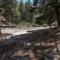Cedar Glen camp is an unimproved backcountry camp.- A Guide to Camping Near L.A.