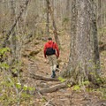 Hike under canopies of fall foliage around Lonesome Lake.- 15 Best Hikes for New Hampshire Fall Foliage