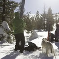 Gearing up for another backcountry lap near Donner Pass.- From Summit to Sea: Catching California's Winter Waves