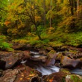 North Fork Smith River on the Kentucky Falls Hike.- 15 Perfect Day Hikes to Find Fall Foliage