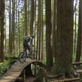 Undulating construction along Ladies Only.- Mountain Biking in British Columbia
