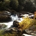 There are many cascades along Big Creek.- Big Creek Trail to Mouse Creek Falls