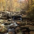 The boulder-strewn Big Creek.- Big Creek Trail to Mouse Creek Falls