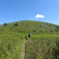 Grassy Cove Top on the Art Loeb Trail. - 15 Must-Do Adventures Along The Blue Ridge Parkway