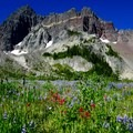 Three Fingered Jack from Canyon Creek Meadow.- Canyon Creek Meadows