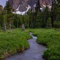 The creek meanders through the verdant meadow.- Canyon Creek Meadows