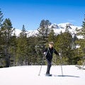 Mount Tallac, Glen Alpine Trail.- Best Snowshoe Trails in Tahoe's Backcountry