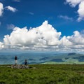 The view from Round Bald.- 5 Must-Do Hikes in the North Carolina's Blue Ridge Mountains