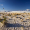 A backcountry campsite in White Sands National Monument. The sites are low and separated by a few dunes.- White Sands National Monument
