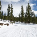 The road to Panther Meadow is wide and clear, though you may be sharing it with snowmobiles.- 5 Reasons to Visit Mount Shasta in the Winter