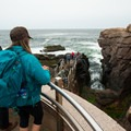 The overlook at Thunder Hole in Acadia National Park.- An Adventure Guide to the Maine Coast