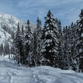 Leaving Smith Brook Road at the second switchback on the Lake Valhalla Trail.- Amazing Snowshoe Trails in Washington