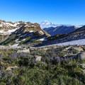 Wildflowers in Goat Rocks Wilderness.- Goat Lake via the Snowgrass Trailhead