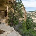 The residents had a great veiw!- Mesa Verde National Park