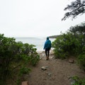 First views of the ocean on Wonderland Trail. - Acadia National Park