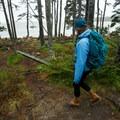Wonderland Trail.- Acadia National Park
