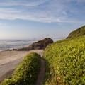 Winema Beach with Cape Kiwanda in the distance.- Winema Beach