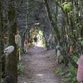Path to Winema Beach.- Winema Beach