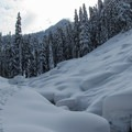 Cross-country ski tracks at East Fork of the Foss River.- Washington's Best Winter Destinations