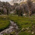 Small meadow surrounding the creek draining Betty Lake.- Broad Canyon: Betty, Goat + Baptie Lakes and the Surprise Valley Divide