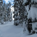 The final push up to the Surprise Lake basin.- Great Snowshoeing Near Seattle